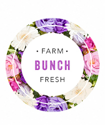 Farm Fresh Bunch - Click to order